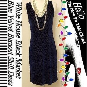 WHBM Blue Velvet Burnout Shift Dress-Medium